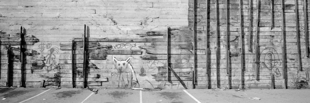 Painting Of A Dog On A Wall, San Francisco, California, USA
