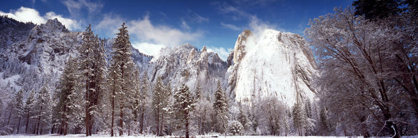 Snowy trees with rocks in winter, Cathedral Rocks, Yosemite National Park, California, USA
