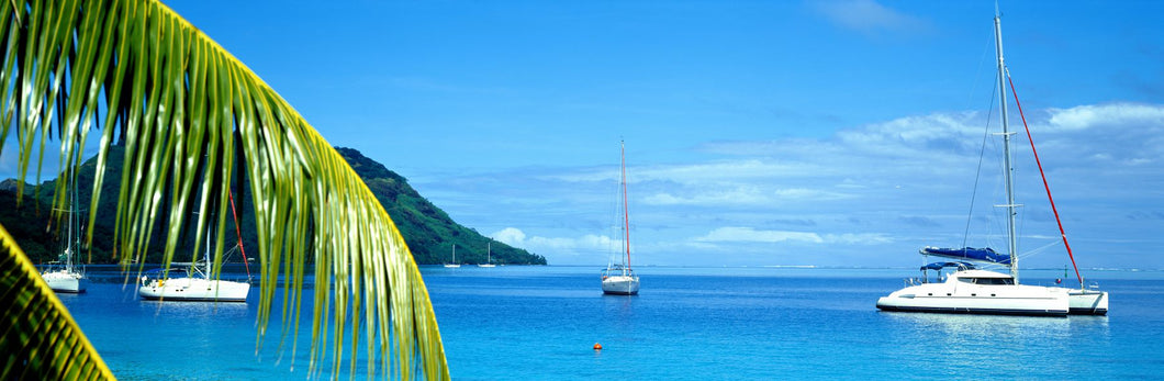 Sailboats in the ocean, Tahiti, Society Islands, French Polynesia