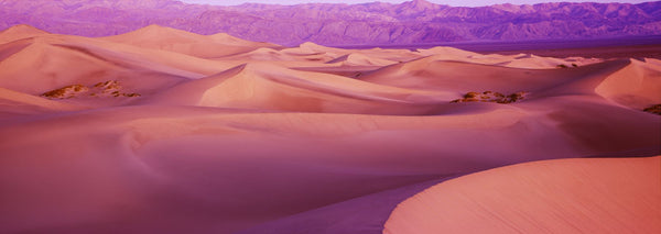 Sand dunes in a desert, Death Valley National Park, California, USA