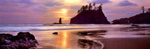 Silhouette of sea stacks at sunset, Second Beach, Olympic National Park, Washington State, USA