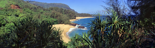 High angle view of a beach, Lumahai Beach, Kauai, Hawaii, USA