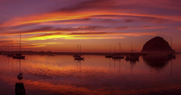 Scenic view of the Morro Bay at dusk, San Luis Obispo County, California, USA