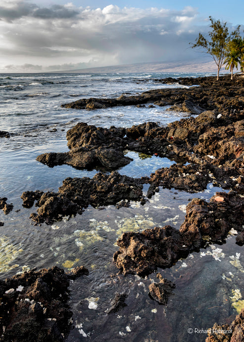 Puako Bay Shoreline, Big Island HI