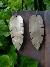White gold feather earrings
