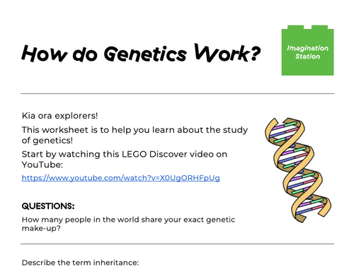 How do Genetics Work? at Imagination Station
