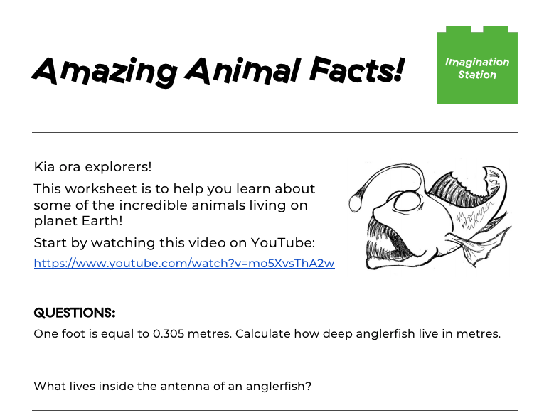 Amazing Animal Facts! at Imagination Station