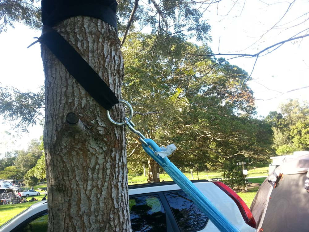 Pair of tree straps - Black