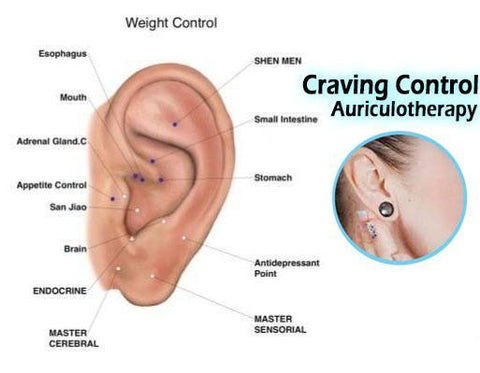 Image of Craving Combating Magnetic Earrings