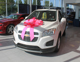 Large Pink Bows - US Auto Supplies