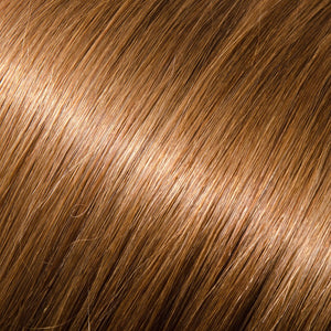 ProLuxe Remy Collection: Tape-In Extensions Color Warm Light Brown #10 22 inches in length