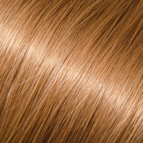 ProLuxe Remy Collection: Tape-In Extensions Color Light Ash Brown #12 22 inches in length