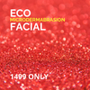 Eco Microdermabrasion Facial SALE!