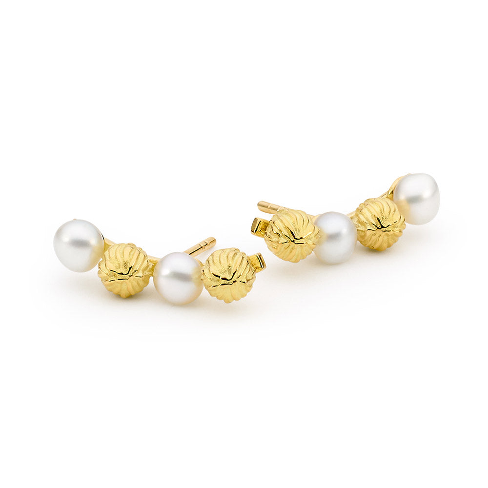 Pearl and tea plant seed inspired earrings jewellery stores perth perth jewellery stores australian jewellery designers online jewellery shop perth jewellery shop jewellery shops perth perth jewellers jewellery perth jewellers in perth diamond jewellers perth bridal jewellery australia pearl jewellery australian pearls diamonds and pearls perth