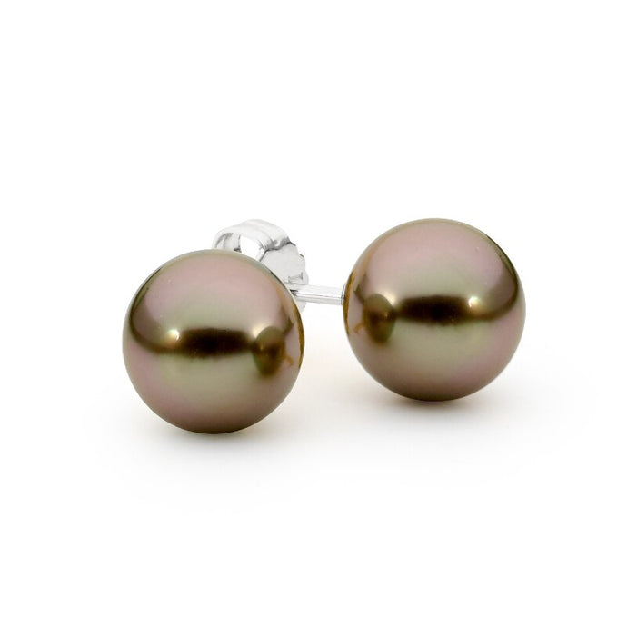 Black Pearl Stud Earrings jewellery stores perth perth jewellery stores australian jewellery designers online jewellery shop perth jewellery shop jewellery shops perth perth jewellers jewellery perth jewellers in perth diamond jewellers perth