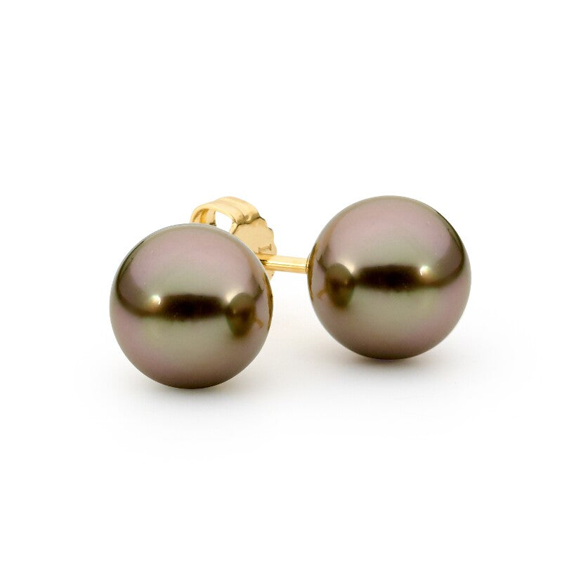 Gold Pearl Stud Earrings jewellery stores perth perth jewellery stores australian jewellery designers online jewellery shop perth jewellery shop jewellery shops perth perth jewellers jewellery perth jewellers in perth diamond jewellers perth bridal jewellery australia pearl jewellery australian pearls diamonds and pearls perth