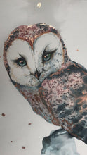 Load and play video in Gallery viewer, OWL Original Artwork - CUSTOM Owl artwork. COMMISSION