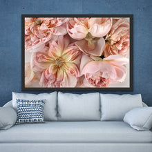 Load image into Gallery viewer, Abstract Floral. Soft Pink. Flower Power Macro. Art Print. Antuanelle 1 Pink Floral Artwork. Limited Edition Print