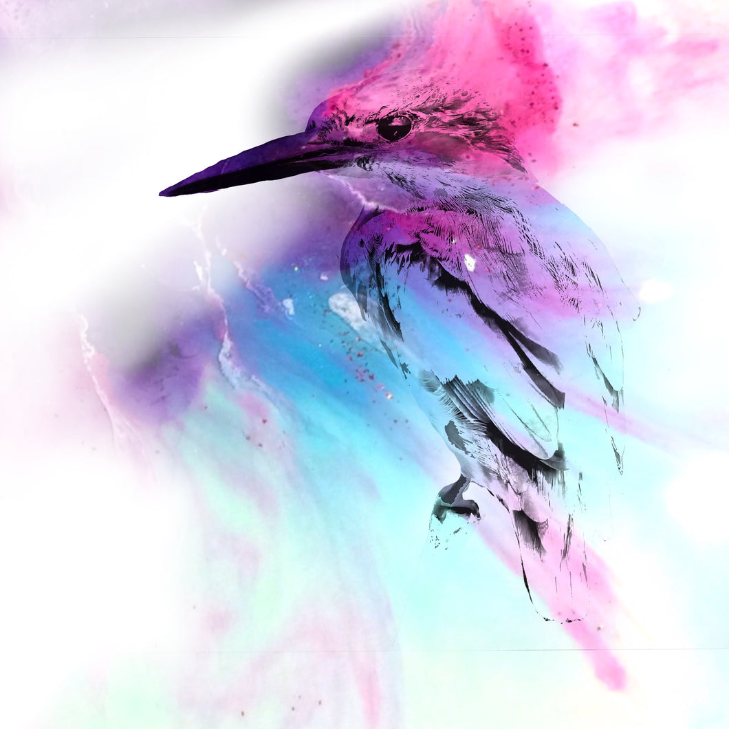 Abstract Colourful bird. Pink Blue Birdie. Art Print. Antuanelle 1 and Limited Edition Print