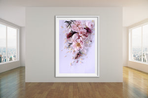 Abstract Floral. Purple. Flower Power Serenade. Art Print. Antuanelle 4 Soft Pastel Floral Artwork. Limited Edition Print