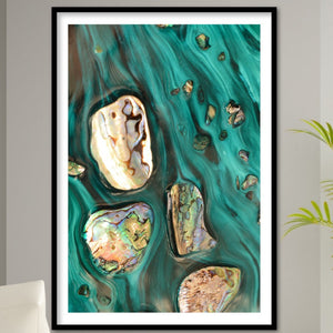 Abstract Art. Rise Above Tide 3 Coastal Shells. Art Print. Antaunelle 1 Shells Artwork. Limited Edition Print