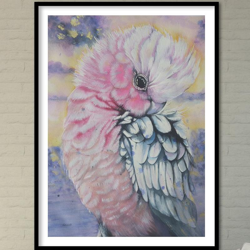 Bird Watercolor. Pink Galah Parrot. Art Print. Antuanelle 1 Parrot Artwork. Limited Edition Print