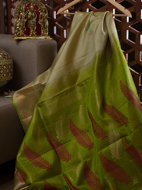 Soft Silk Saree Half white and Pear Green with feather and Zari Border