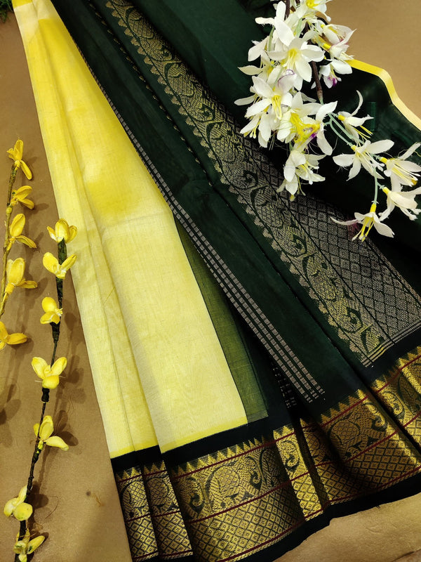 Silk cotton saree mild yellow and black with rich korvai zari border