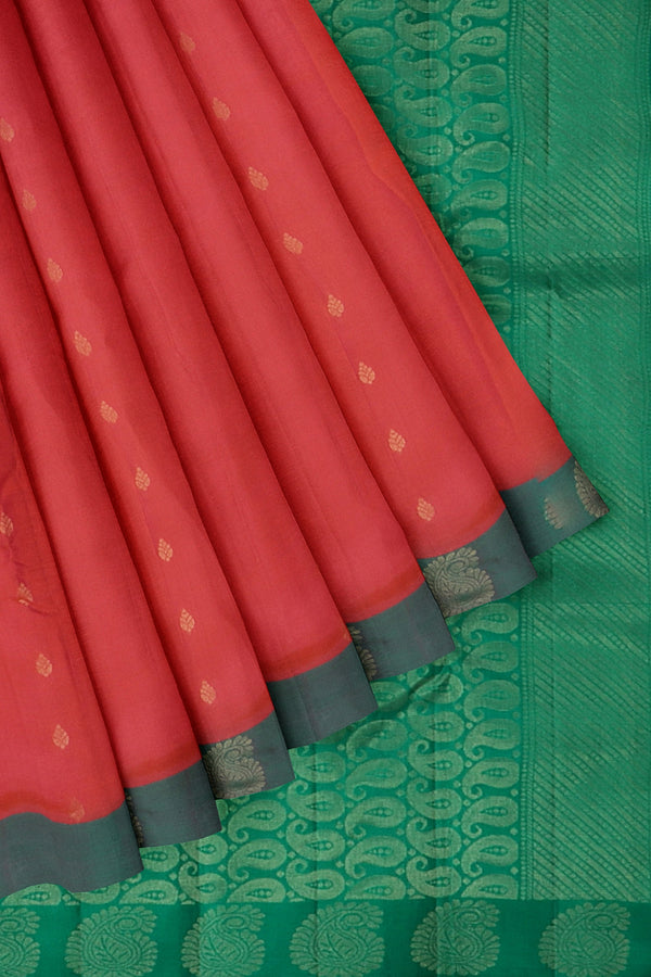 Kanjivaram silk saree candy pink and dual shade of green with golden zari buttas and paisley border
