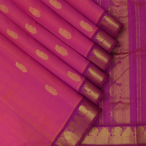 Silk Cotton Saree-Vairaoosi Dual Shade Of Pink with Buttas and Temple zari Border 9 Yards