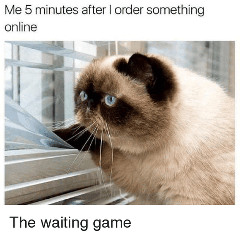 very-craftea-cat-waiting-online-order-tea-meme-tea