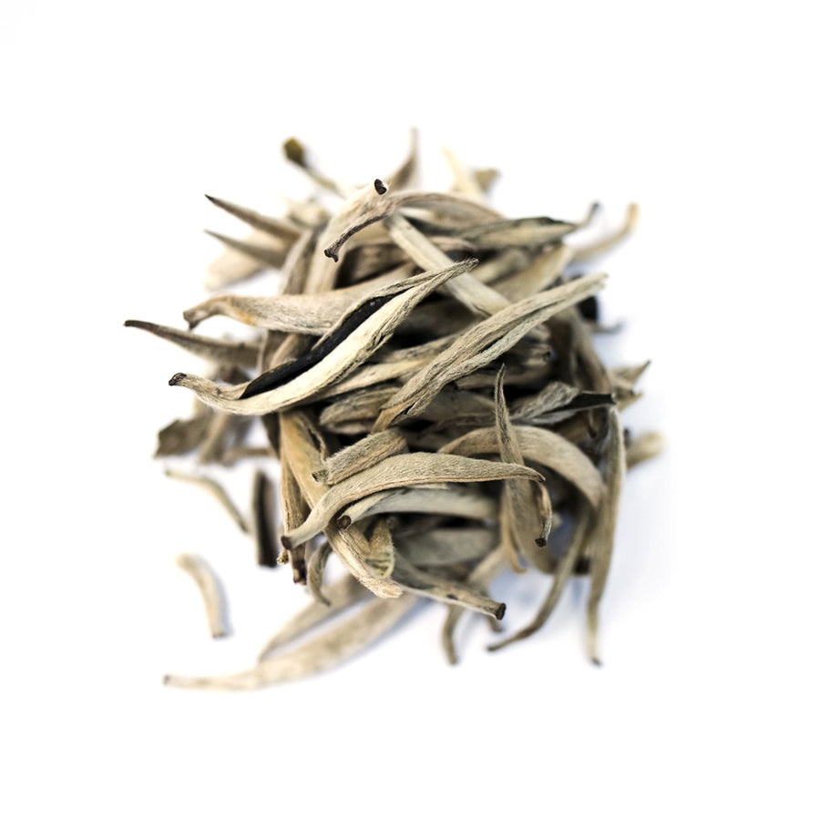 Close up of Silver Needles loose leaf white tea from Very Craftea