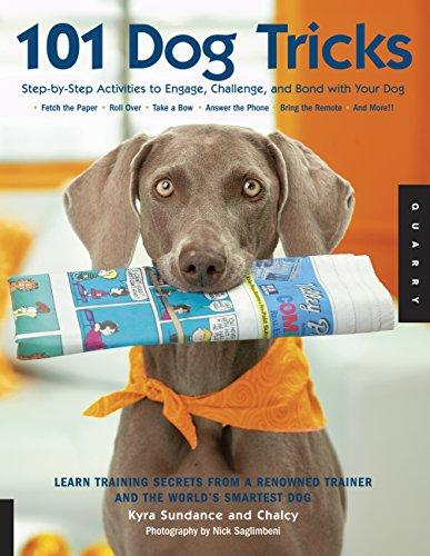 Step by Step Activities to Engage, Challenge, and Bond with Your Dog