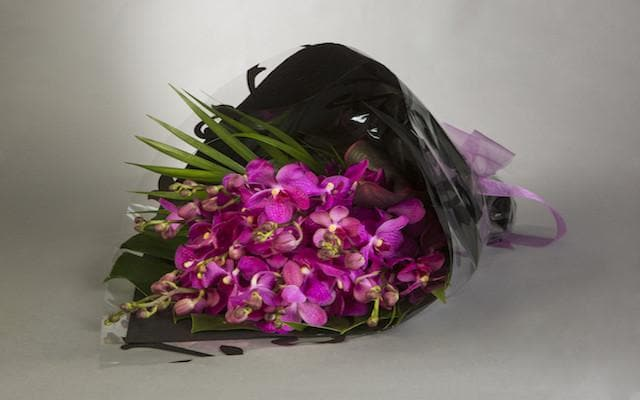 Real Florist. Real Flowers. Melbourne Online Delivery. Same Day | Striking Pop of Colour
