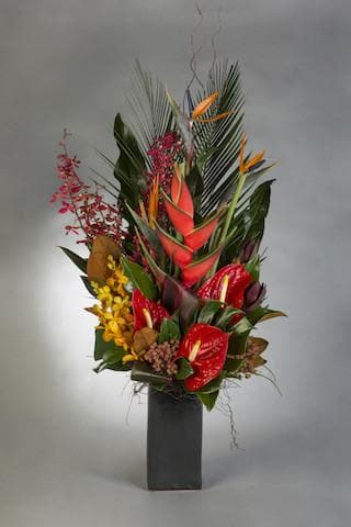 Real Florist. Real Flowers. Melbourne Online Delivery. Same Day | Stunning Tropical Arrangement