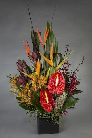 Sir Tropic Arrangement - Mordialloc Florist