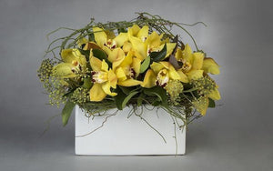 Real Florist. Real Flowers. Melbourne Online Delivery. Same Day | Cymbidium Orchid Sensation