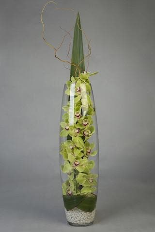 Beauty Within - Cymbidium Belly Vase Arrangement - Mordialloc Florist