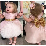 Pink &Ivory Poofy Baby Girl Party Dress First Communion Dress Flower Girl Toddler Gown