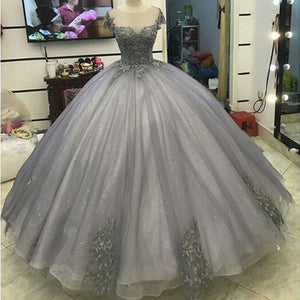 LP5556 Glitter Grey Silver Ball Gown Princess Prom Dresses Lace Appliqued Victorian Formal gowns for masquerade Ball