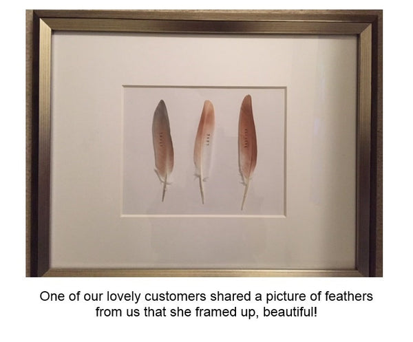 Personalized Feather with Your Words