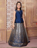Blue Silk Lehenga with Navy Blue Choli
