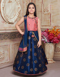 Navy Blue Lehenga with Pink Silk Choli