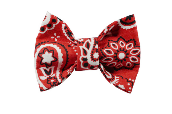 "Bandana Print Bow ""Country Time"""
