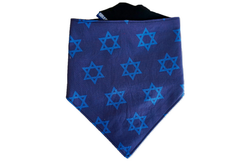 """Let's Get Lit"" Star of David Hanukkah Dog Bandana"