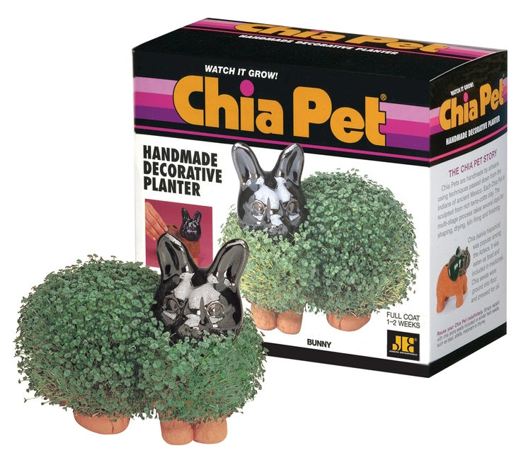 Chia Pets Page 3 Tvtimedirect
