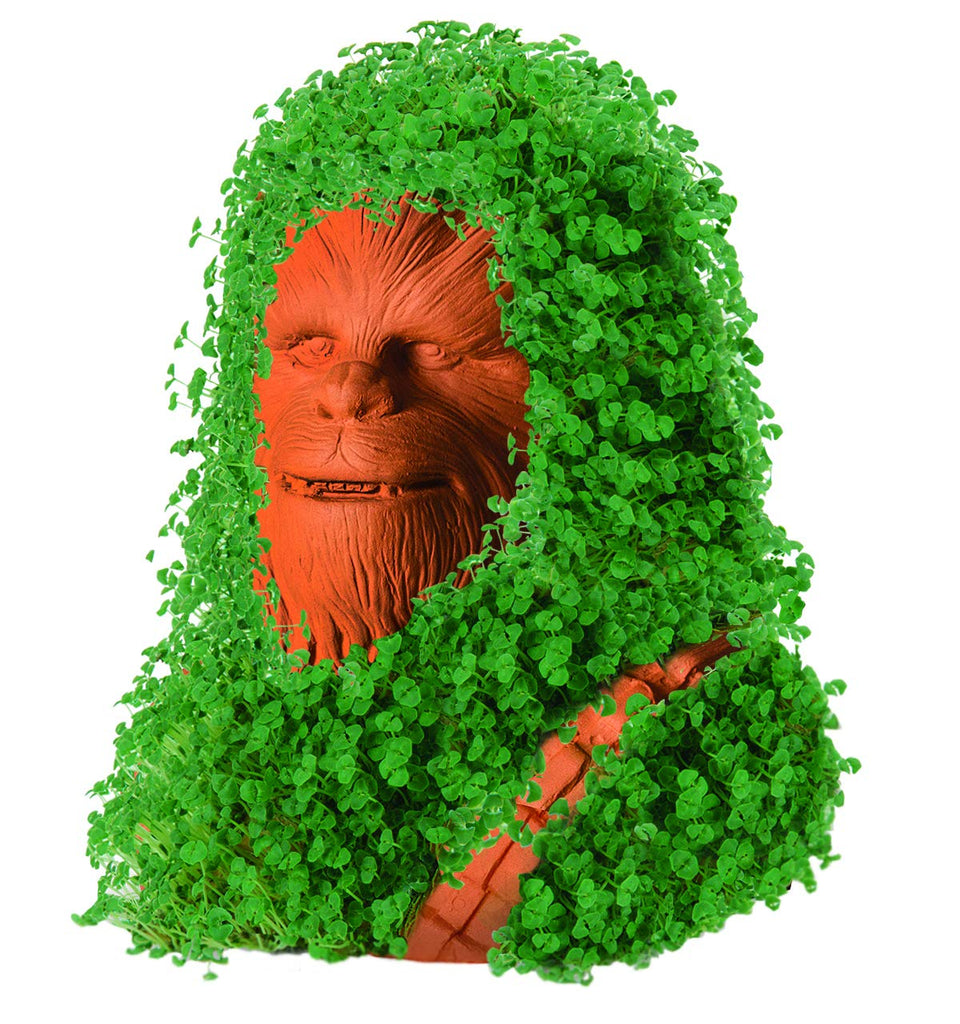 Chia Pet Planter- Chewbacca Decorative Planter