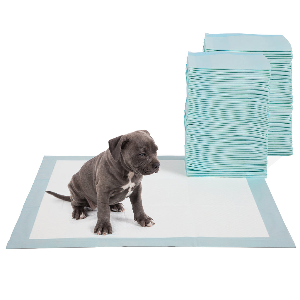 Four Paws DELUXE Wee Wee Pads for Standard and Little Dogs, 36 Count