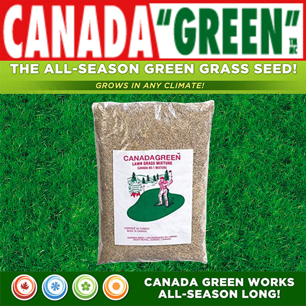Canada Green Grass Lawn Seed- 2 Pounds