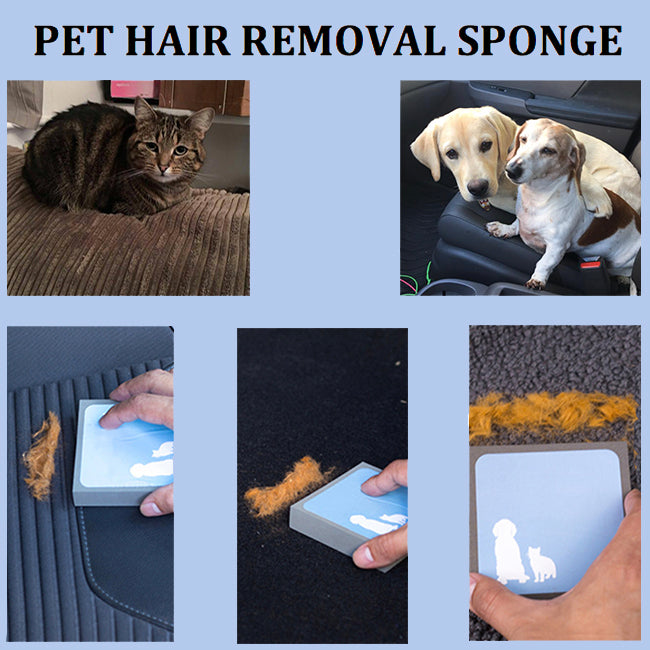 Pet Hair Removal  Cleaning Foam Sponge for Dogs and Cats